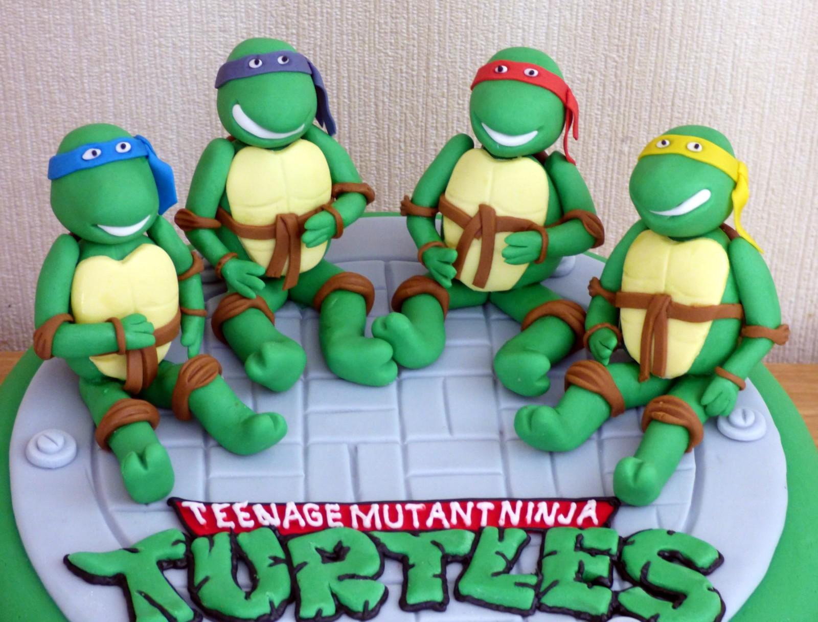 Teenage Mutant Ninja Turtles Novelty Birthday Cake Susie